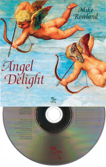 Angel Delight av Mike Rowland (Lydbok-CD)