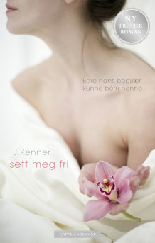 Sett meg fri av Julie Kenner (Ebok)