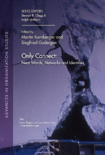 Only connect av Martin Kornberger og Siegfried Gudergan (Heftet)