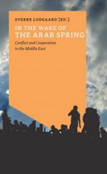 In the wake of the Arab spring (Heftet)