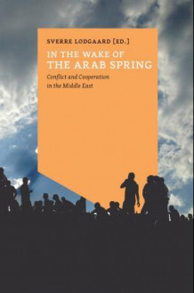 In the wake of the arab spring (Ebok)