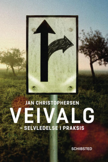 Veivalg av Jan Christophersen (Ebok)