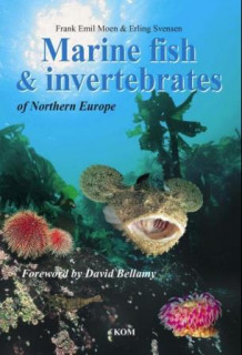 Marine fish and invertebrates of Northern Europe av Frank Emil Moen (Innbundet)